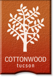Cottonwood Tucson - co-occurring disorders treatment in Arizona - Tucson AZ drug and alcohol rehab center - drug detox - process addictions - adult addiction treatment center