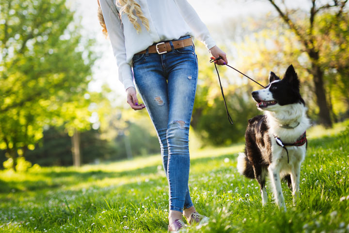 cropped shot of young woman walking her dog outdoors - nature